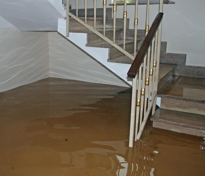 Standing water in a living room.
