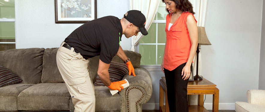Syracuse, NY carpet upholstery cleaning